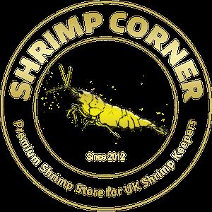 Shrimp Corner